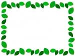 新緑の葉っぱのフレーム囲み飾り枠イラスト