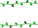 新緑の葉っぱとツタの上下フレーム飾り枠イラスト