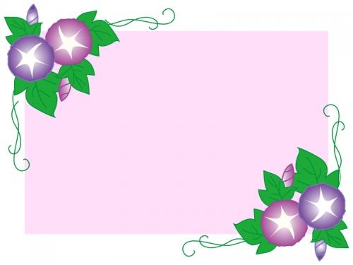 ピンク背景の朝顔のフレーム飾り枠イラスト