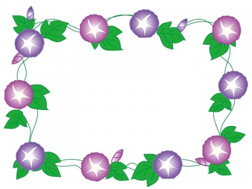 赤と紫の朝顔のフレーム飾り枠イラスト