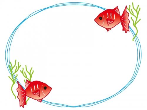 金魚と水草のフレーム飾り枠イラスト