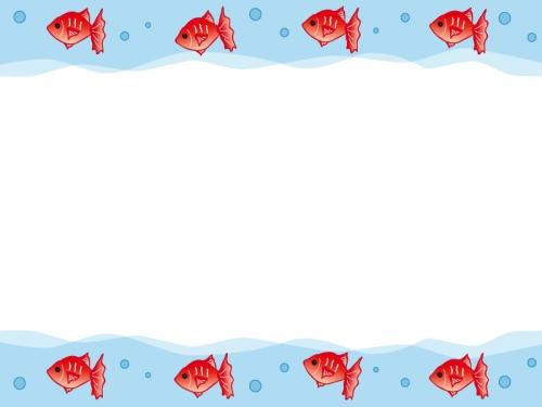 列になって泳ぐ金魚のフレーム飾り枠イラスト 無料イラスト かわいい