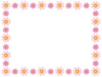 二色のコスモスが並んだフレーム飾り枠イラスト