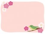 ウグイスと梅の花のピンク色のフレーム飾り枠イラスト