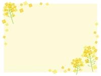 菜の花のフレーム飾り枠イラスト03