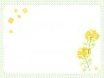 菜の花と黄緑色の水玉模様の四角フレーム飾り枠イラスト