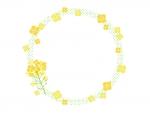菜の花と黄緑色の水玉模様の円形フレーム飾り枠イラスト