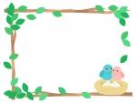 青とピンクの小鳥と鳥の巣のフレーム飾り枠イラスト