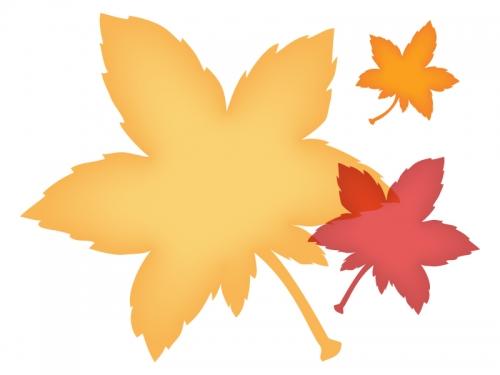 黄色い紅葉(もみじ)の形のフレーム飾り枠イラスト