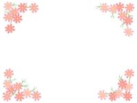 四隅のコスモスの花のフレーム飾り枠イラスト
