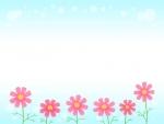 コスモスと水色背景のフレーム飾り枠イラスト