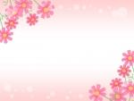 コスモスとピンク色背景のフレーム飾り枠イラスト