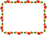 ハイビスカスの花の囲みフレーム飾り枠イラスト